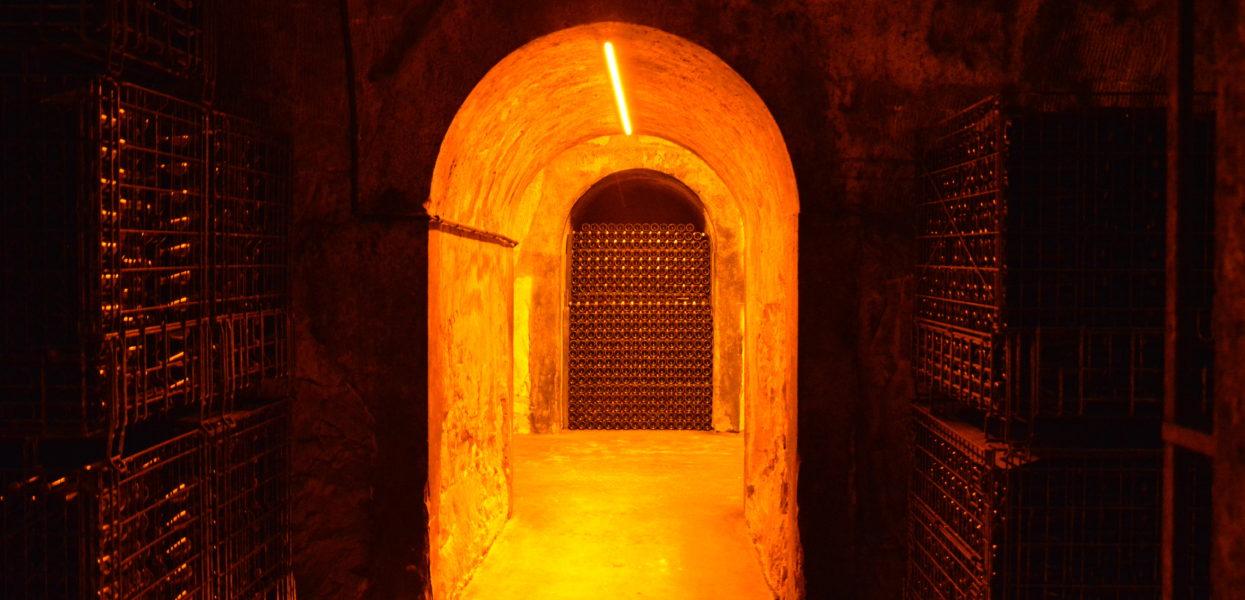 Open Cellars in Montagne de Reims